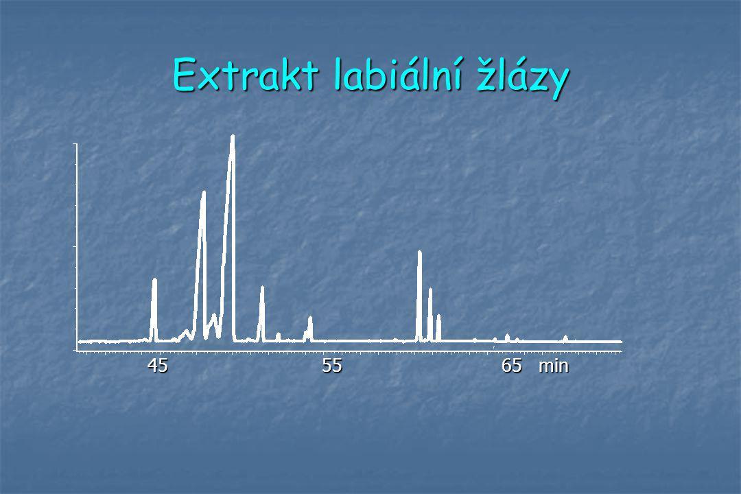 Extrakt labiální žlázy