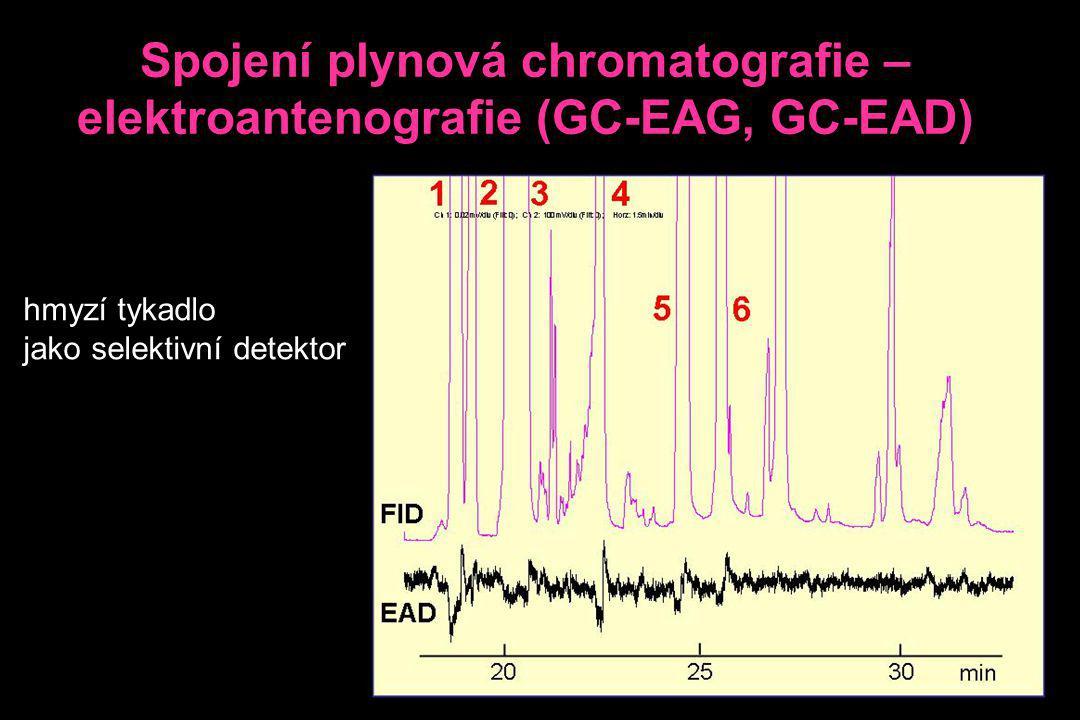 Spojení plynová chromatografie – elektroantenografie (GC-EAG, GC-EAD)