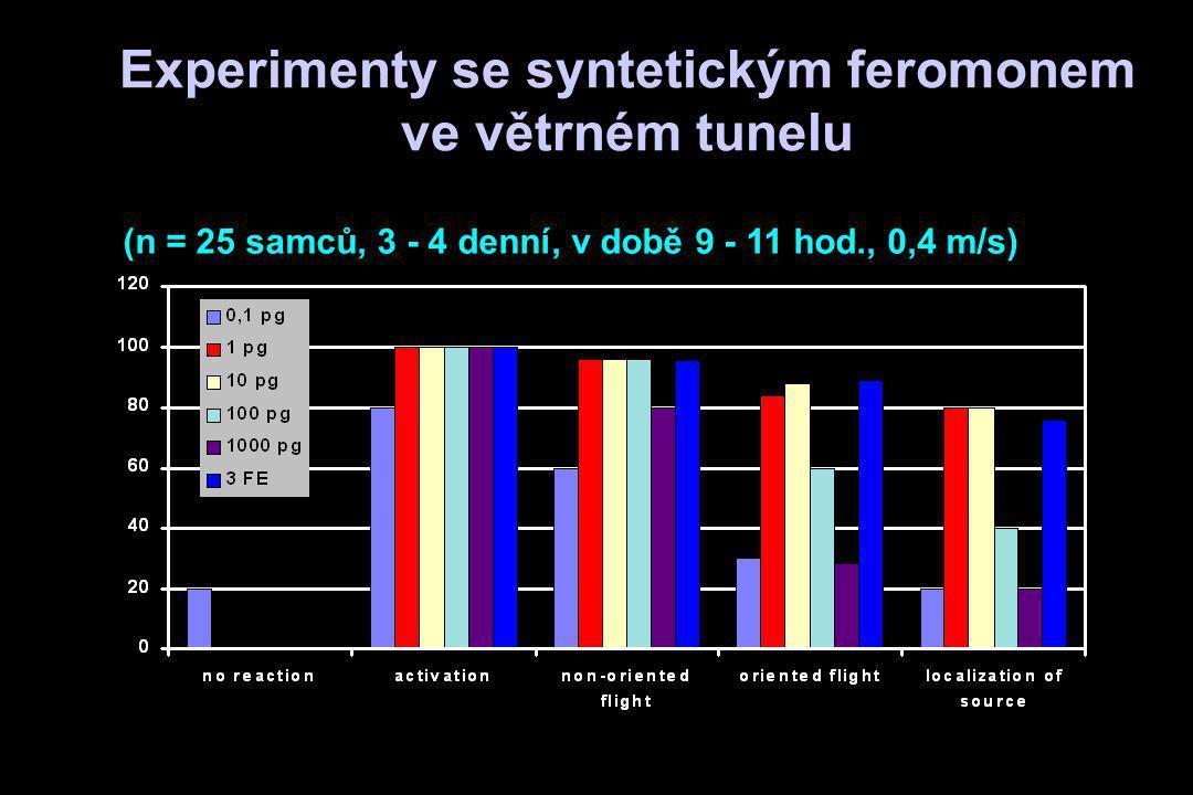 Experimenty se syntetickým feromonem