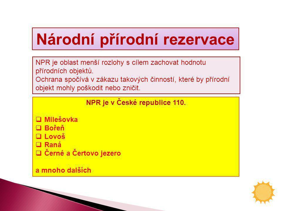 Národní přírodní rezervace NPR je v České republice 110.