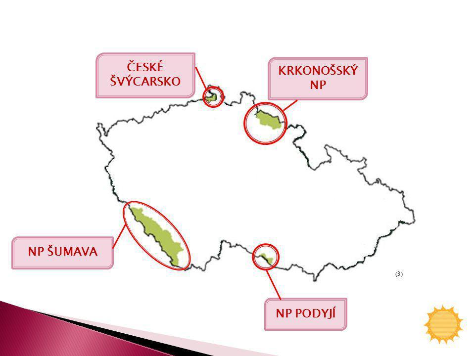 ČESKÉ ŠVÝCARSKO KRKONOŠSKÝ NP NP ŠUMAVA NP PODYJÍ