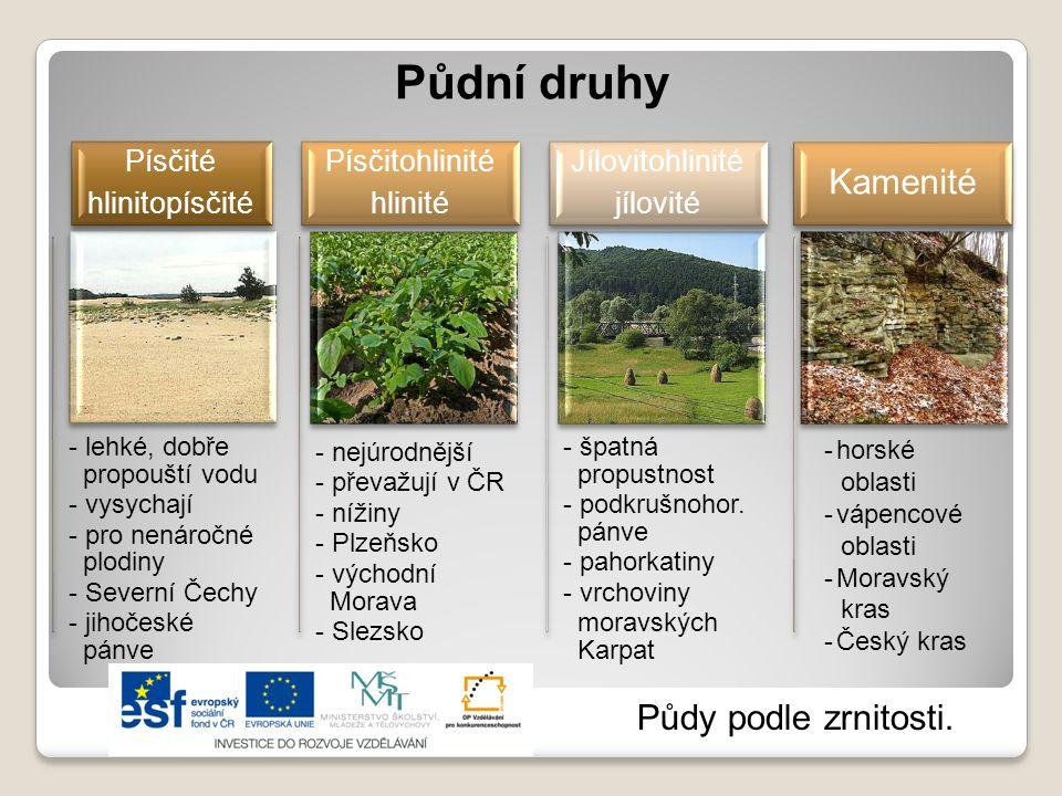 Půdní druhy Kamenité Půdy podle zrnitosti. Písčité hlinitopísčité