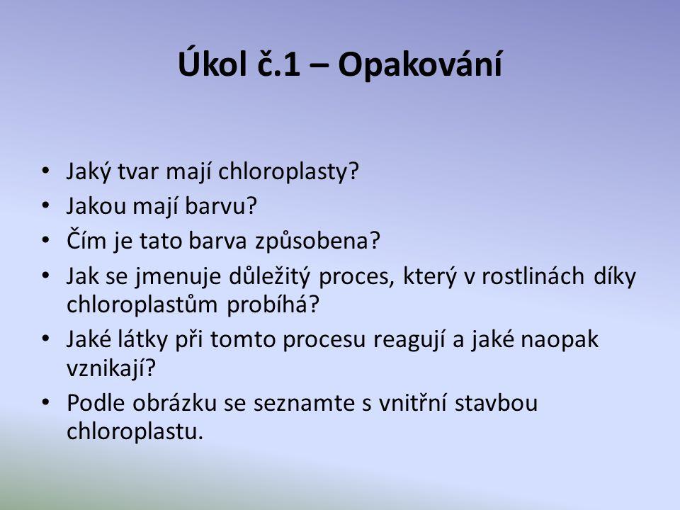 Úkol č.1 – Opakování Jaký tvar mají chloroplasty Jakou mají barvu