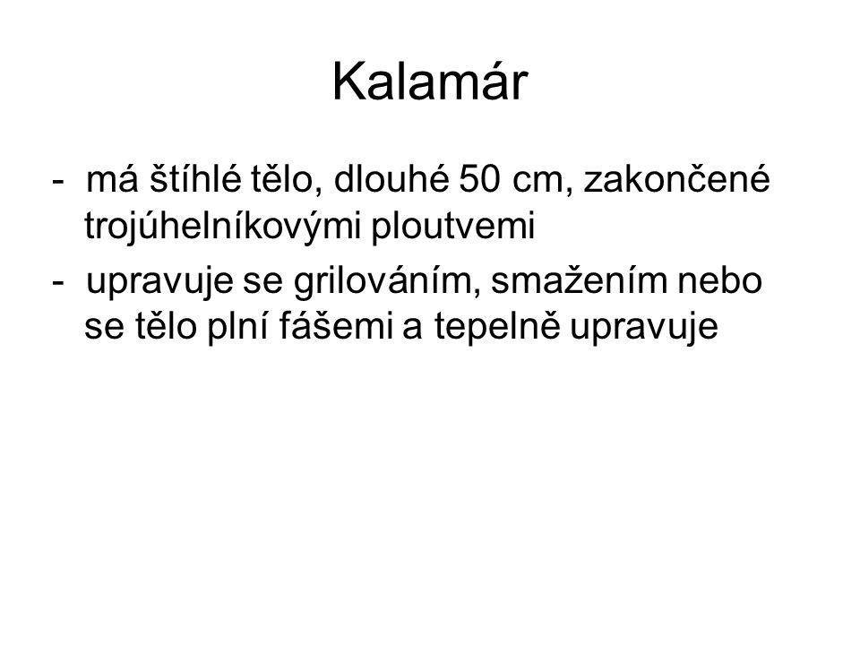 Kalamár - má štíhlé tělo, dlouhé 50 cm, zakončené trojúhelníkovými ploutvemi.