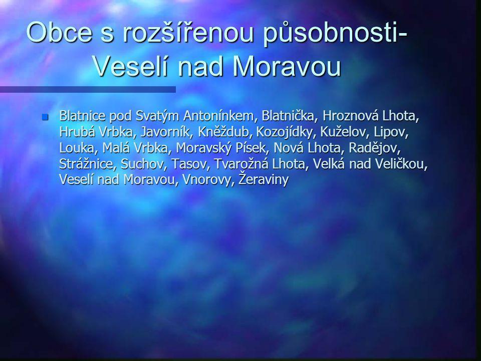 Obce s rozšířenou působnosti-Veselí nad Moravou