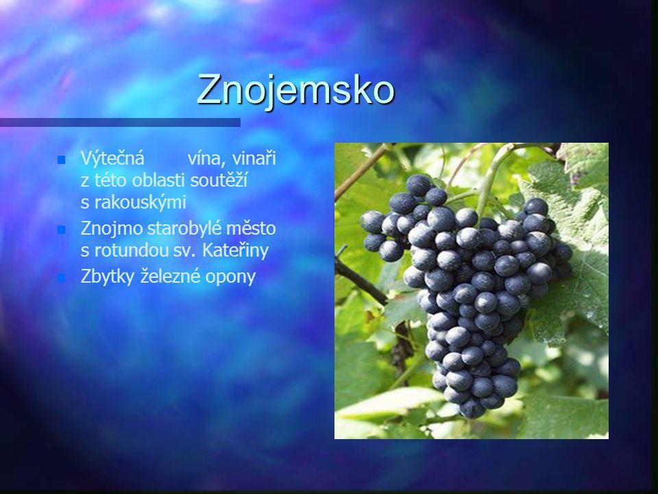 Znojemsko Výtečná vína, vinaři z této oblasti soutěží s rakouskými