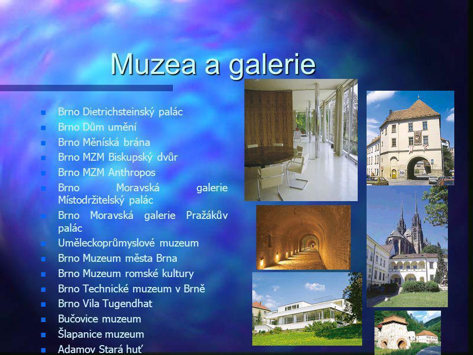 Muzea a galerie Brno Dietrichsteinský palác Brno Dům umění