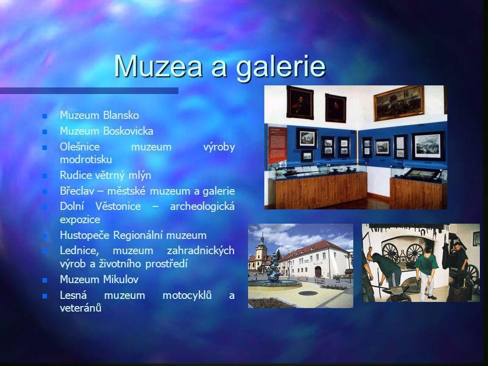 Muzea a galerie Muzeum Blansko Muzeum Boskovicka