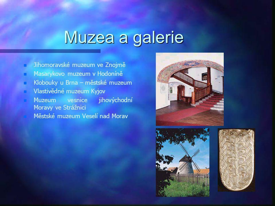 Muzea a galerie Jihomoravské muzeum ve Znojmě