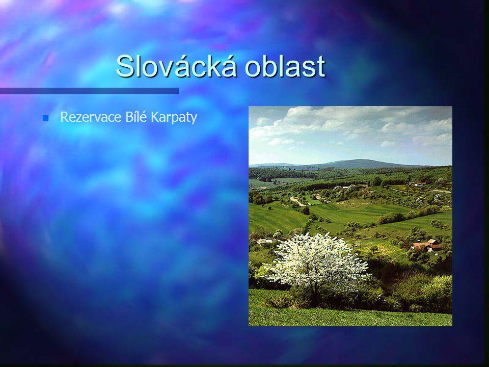 Slovácká oblast Rezervace Bílé Karpaty
