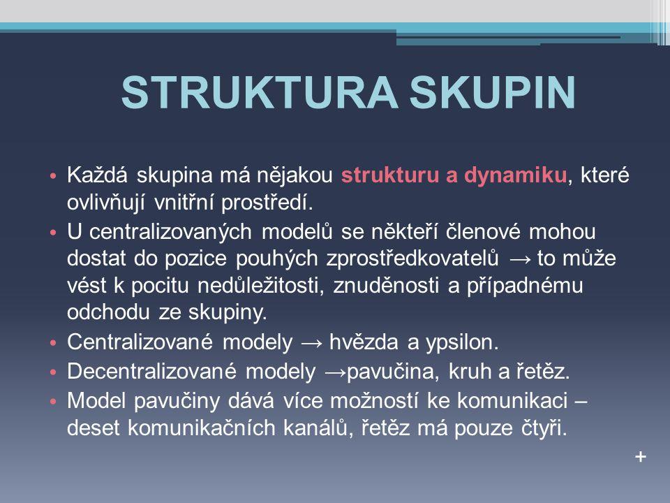 STRUKTURA SKUPIN Každá skupina má nějakou strukturu a dynamiku, které ovlivňují vnitřní prostředí.