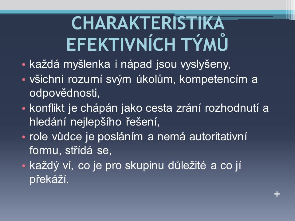 CHARAKTERISTIKA EFEKTIVNÍCH TÝMŮ