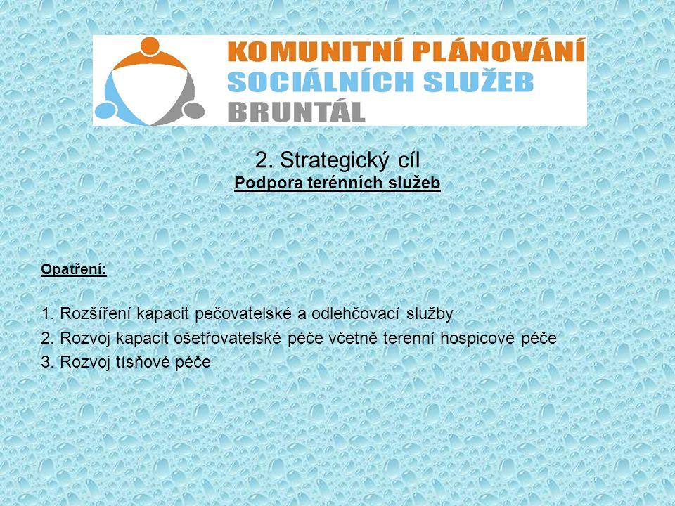 2. Strategický cíl Podpora terénních služeb
