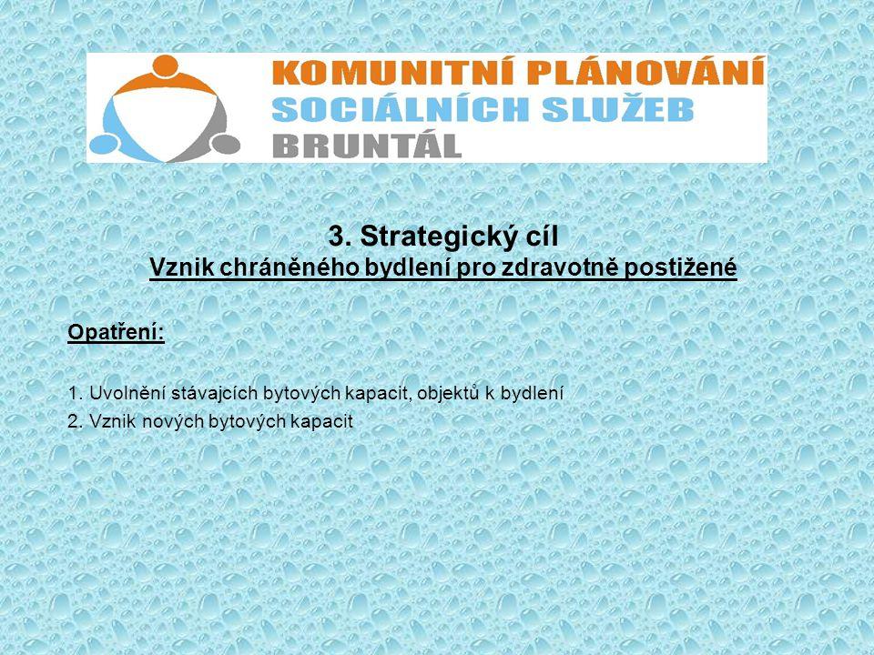 3. Strategický cíl Vznik chráněného bydlení pro zdravotně postižené