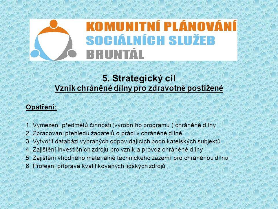 5. Strategický cíl Vznik chráněné dílny pro zdravotně postižené
