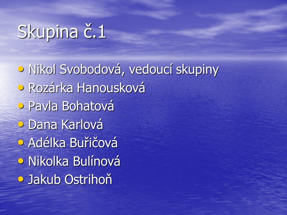 Skupina č.1 Nikol Svobodová, vedoucí skupiny Rozárka Hanousková