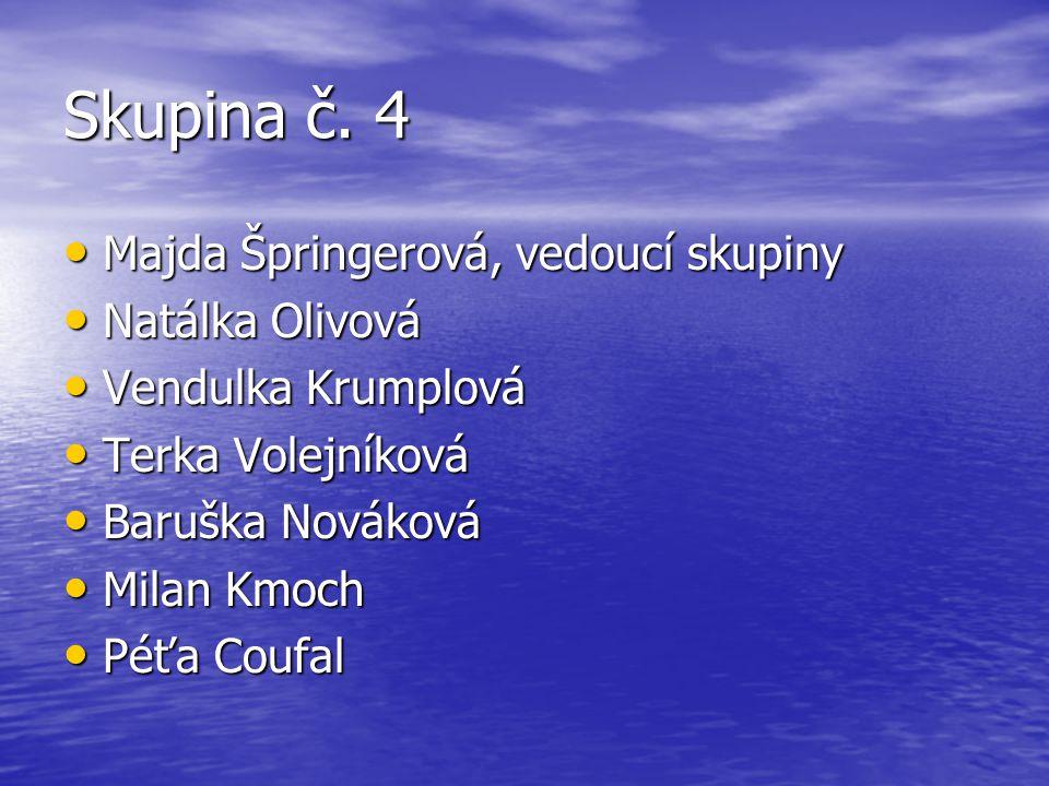 Skupina č. 4 Majda Špringerová, vedoucí skupiny Natálka Olivová