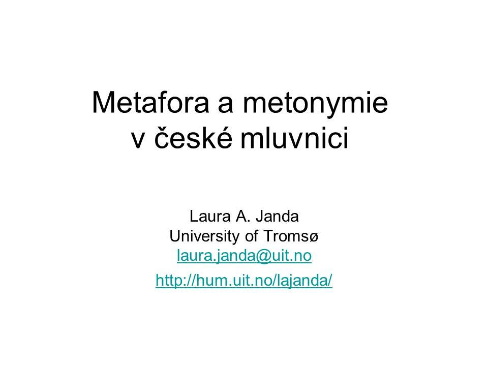 Мetafora a metonymie v české mluvnici