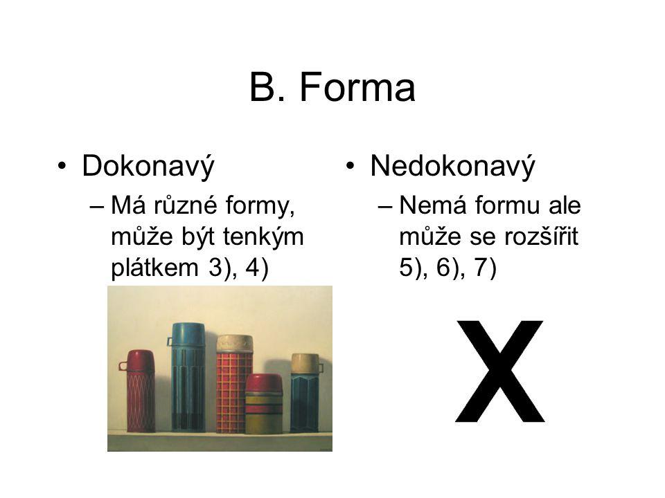 B. Forma Dokonavý Nedokonavý