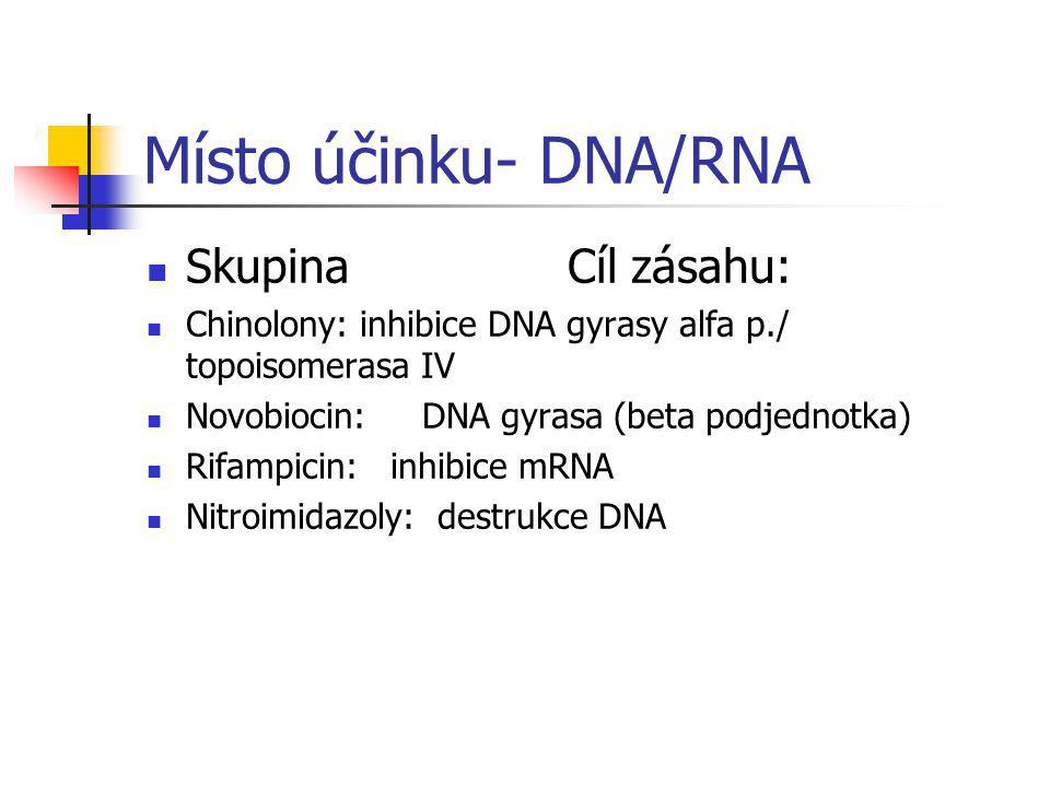Místo účinku- DNA/RNA Skupina Cíl zásahu: