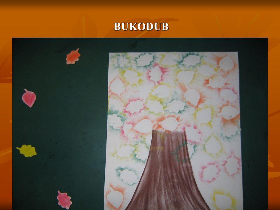 BUKODUB