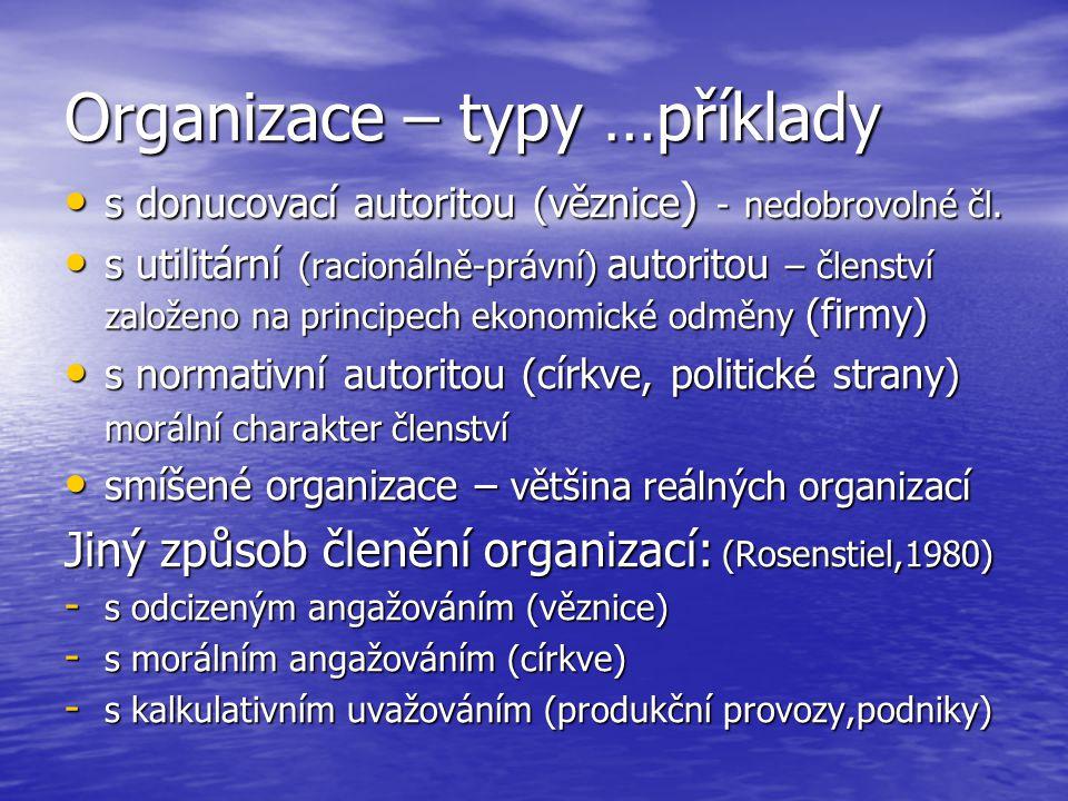Organizace – typy …příklady