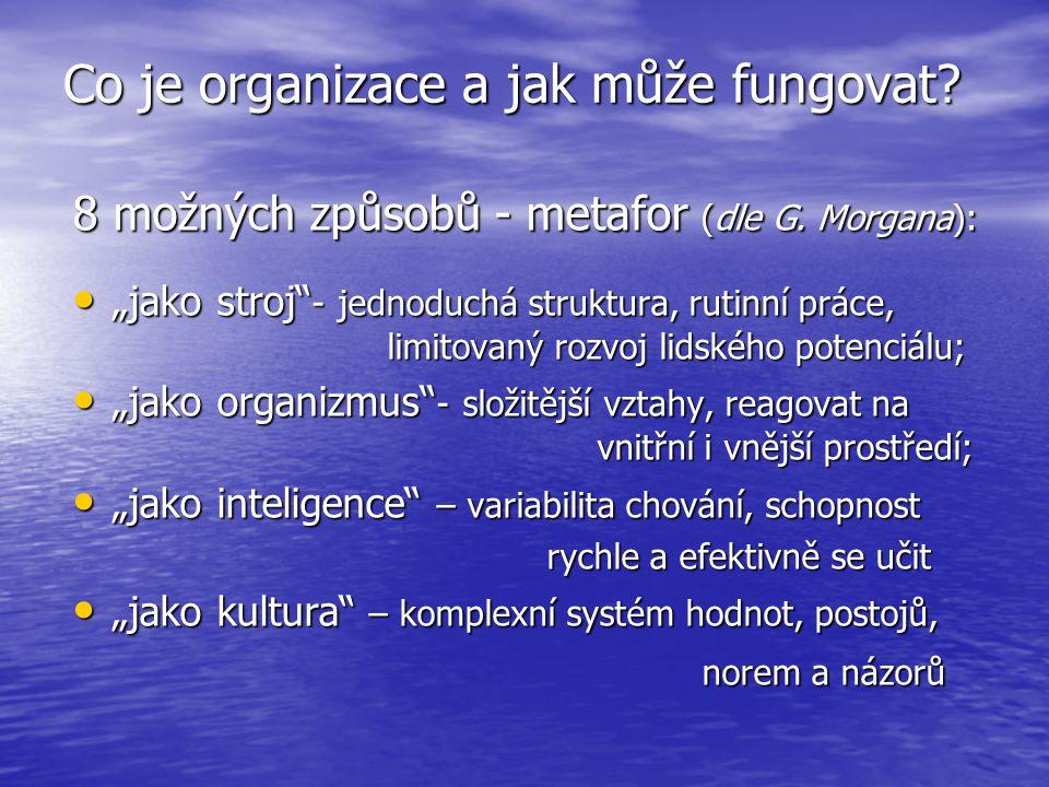Co je organizace a jak může fungovat