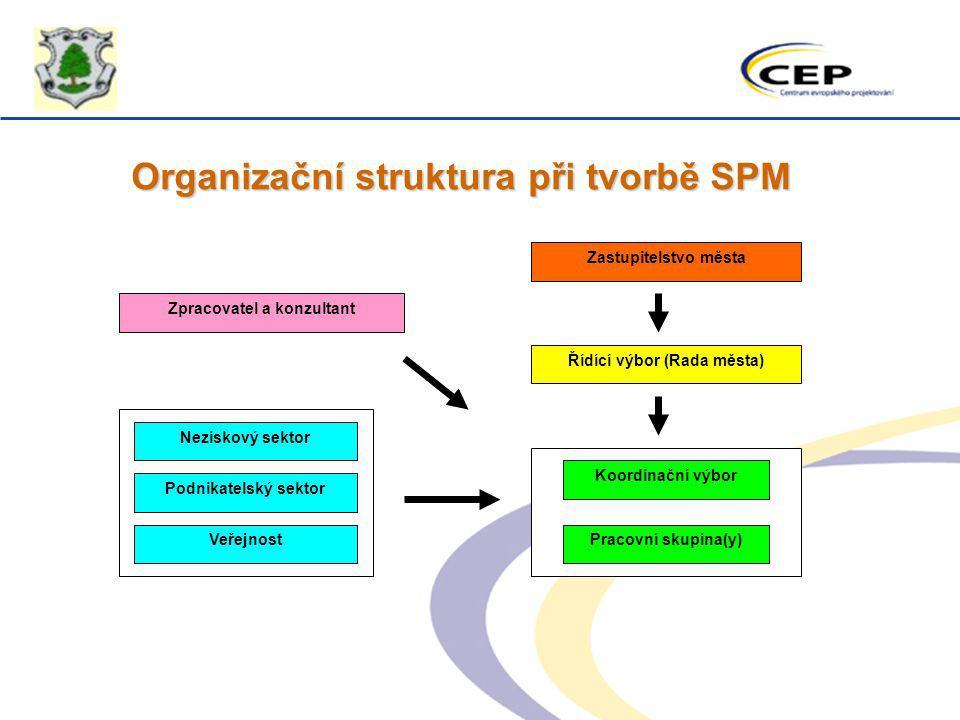 Organizační struktura při tvorbě SPM