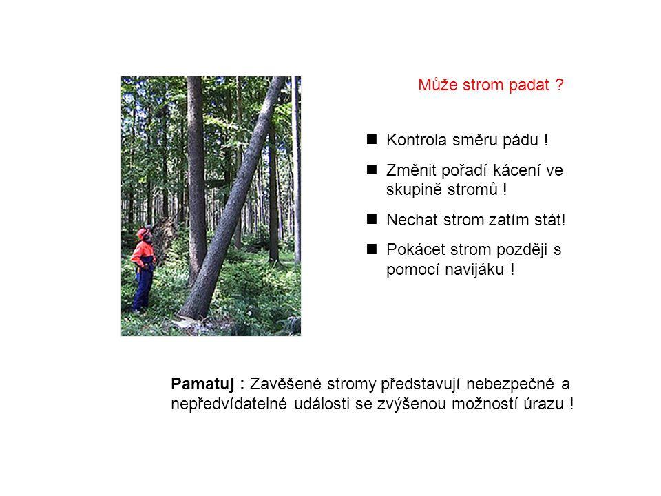 Může strom padat Kontrola směru pádu ! Změnit pořadí kácení ve skupině stromů ! Nechat strom zatím stát!