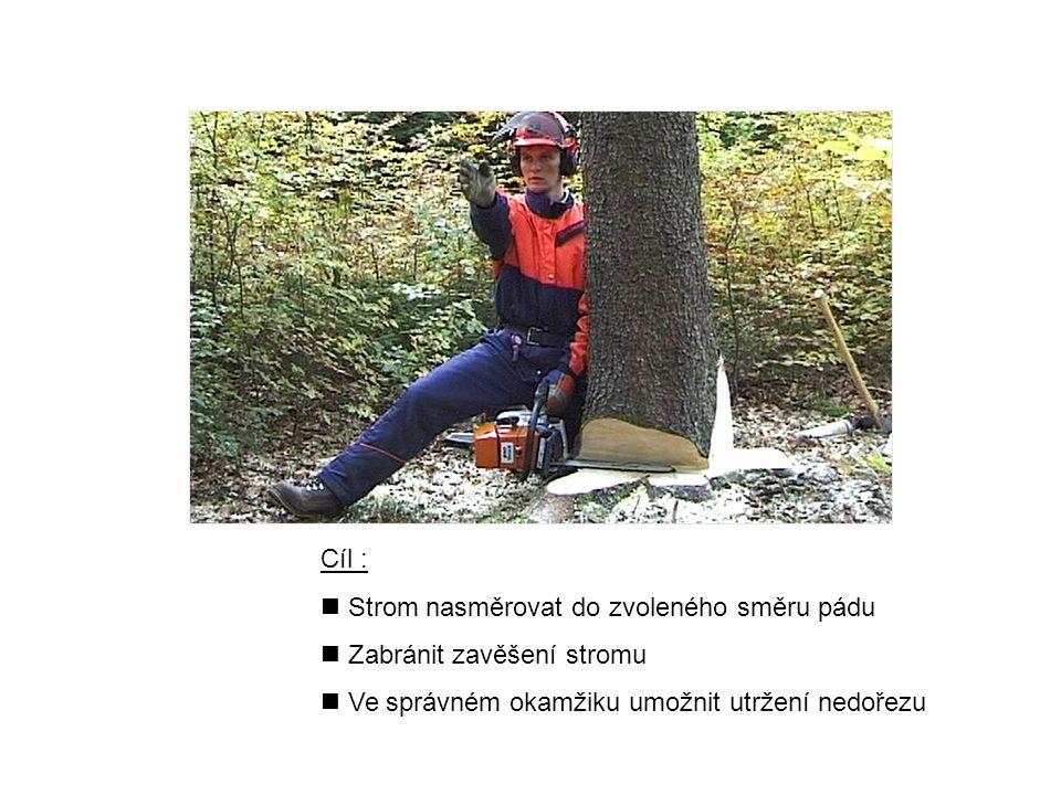 Cíl : Strom nasměrovat do zvoleného směru pádu. Zabránit zavěšení stromu.