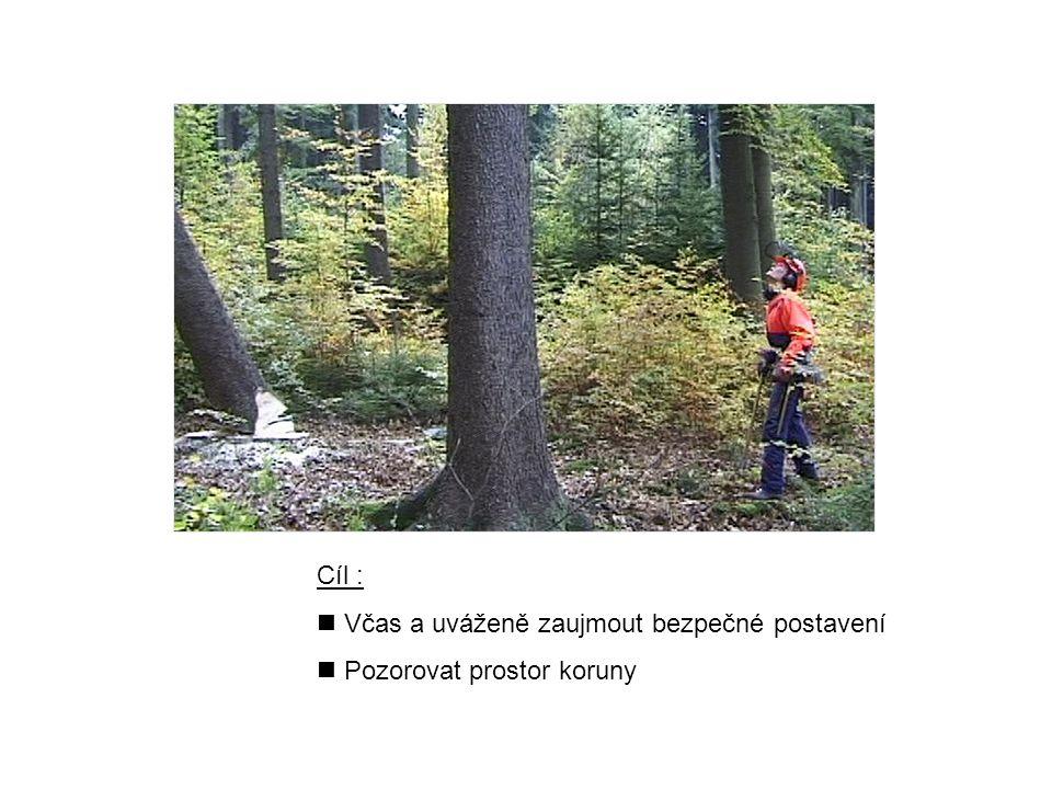 Cíl : Včas a uváženě zaujmout bezpečné postavení Pozorovat prostor koruny