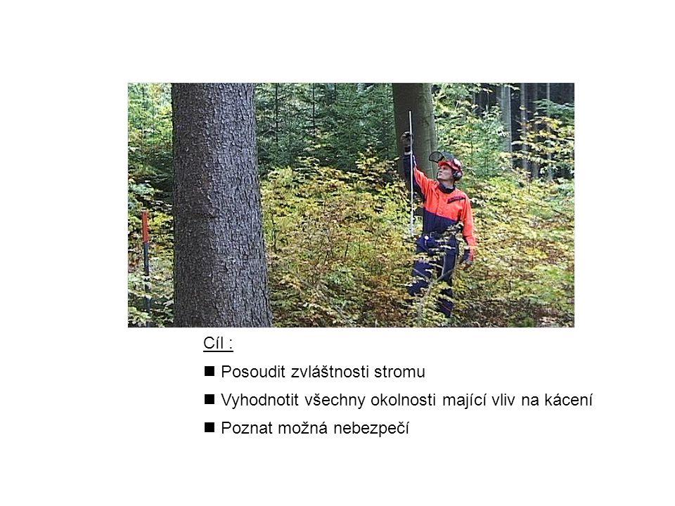 Cíl : Posoudit zvláštnosti stromu. Vyhodnotit všechny okolnosti mající vliv na kácení.