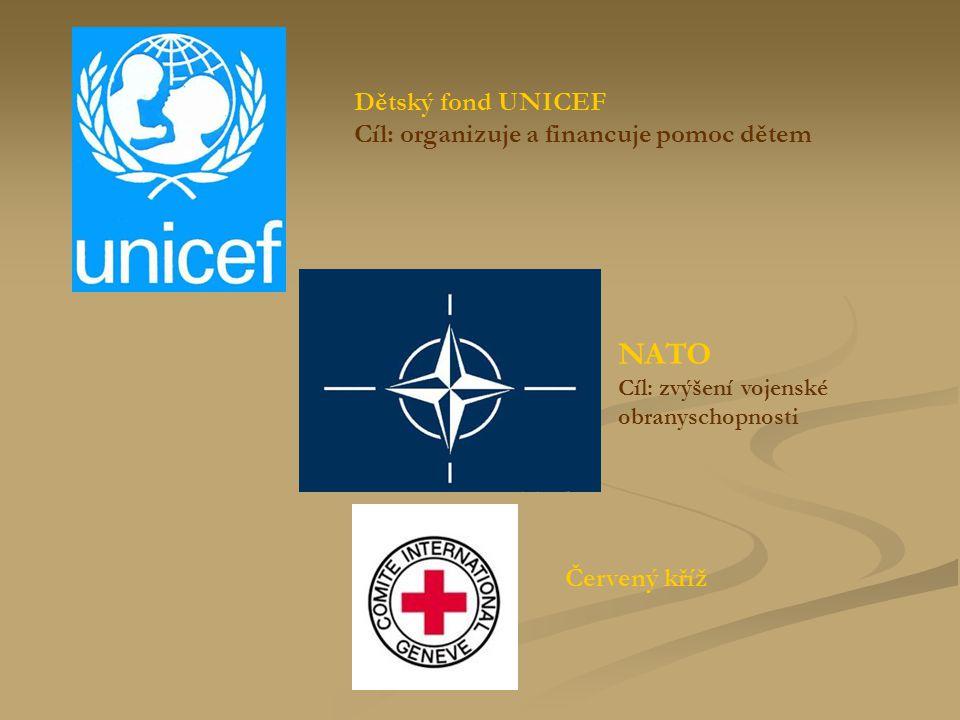 NATO Cíl: zvýšení vojenské obranyschopnosti