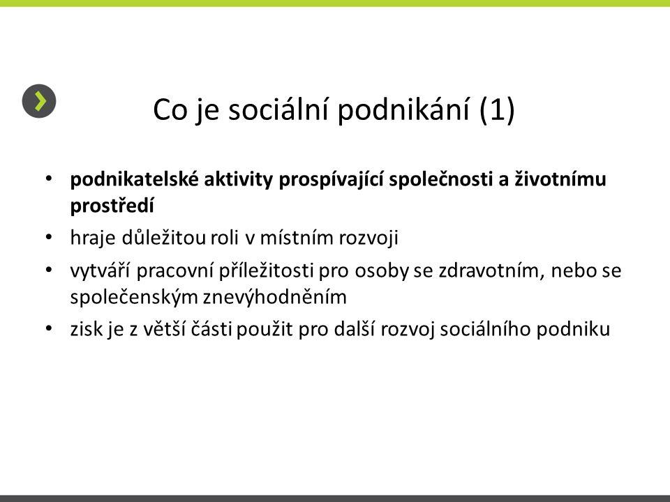 Co je sociální podnikání (1)