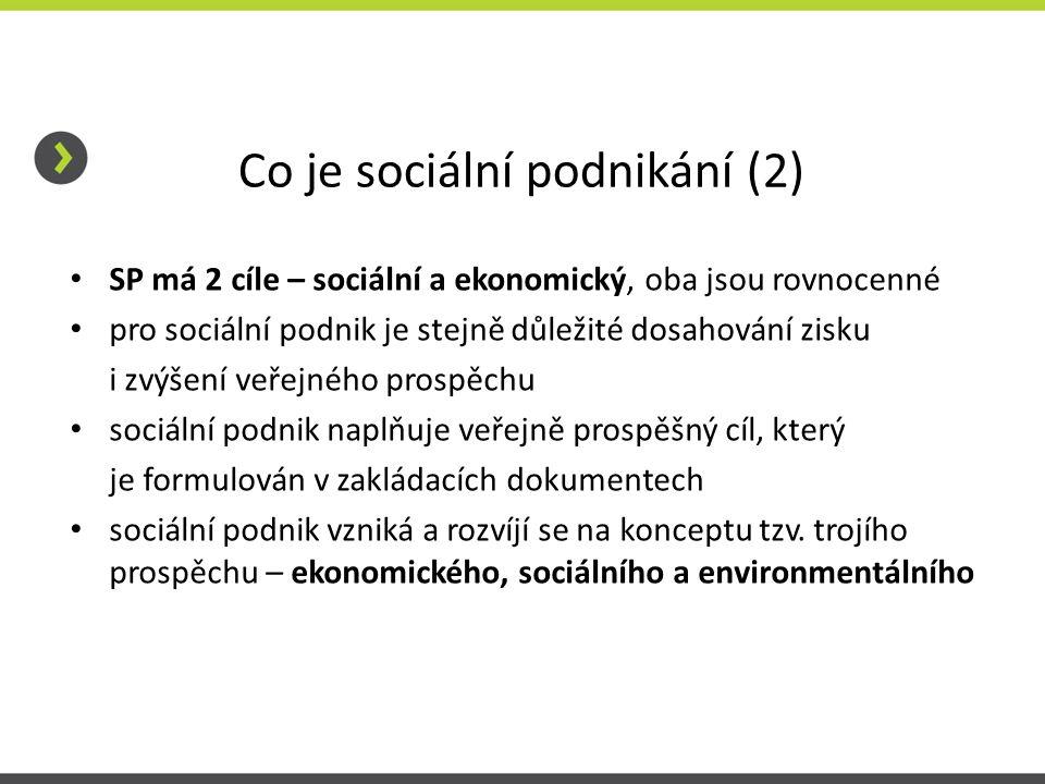 Co je sociální podnikání (2)