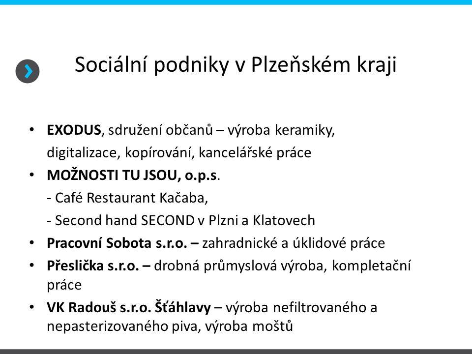 Sociální podniky v Plzeňském kraji