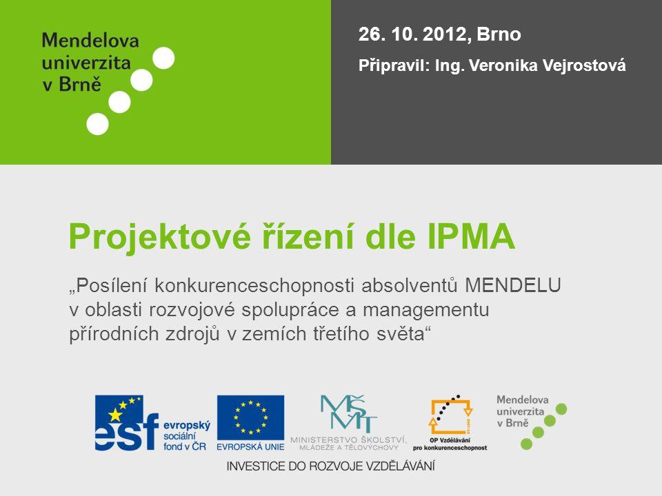Projektové řízení dle IPMA