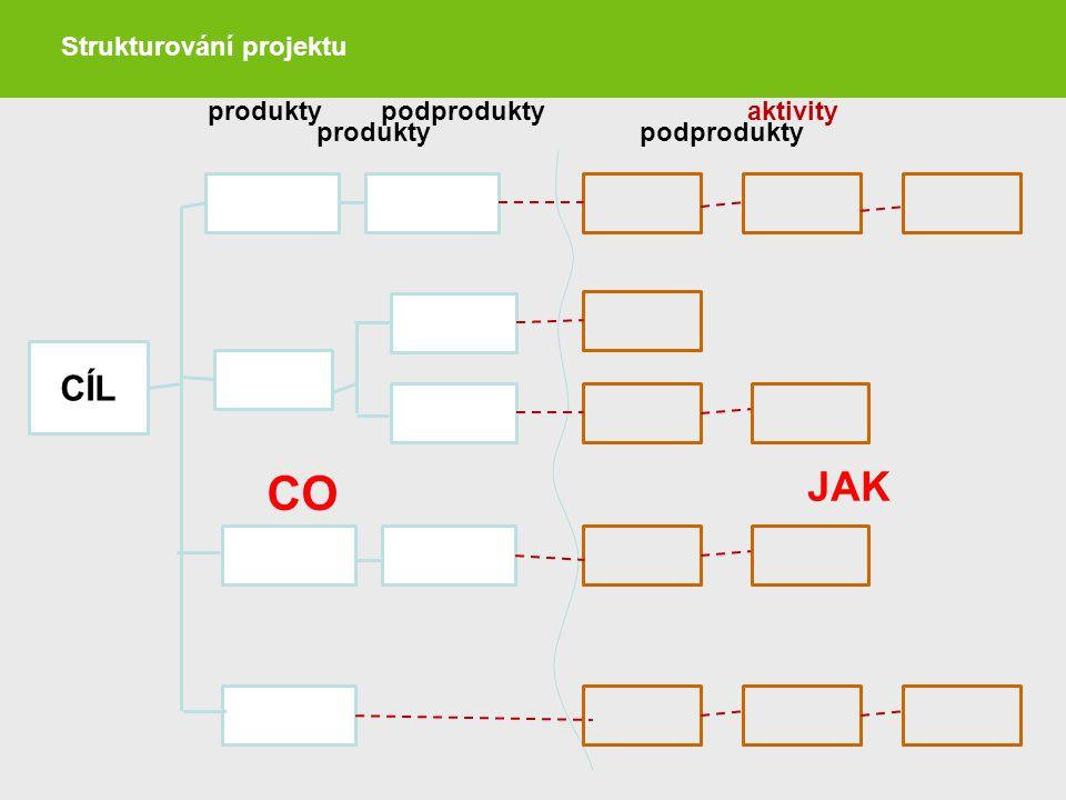CO JAK CÍL Strukturování projektu produkty podprodukty aktivity