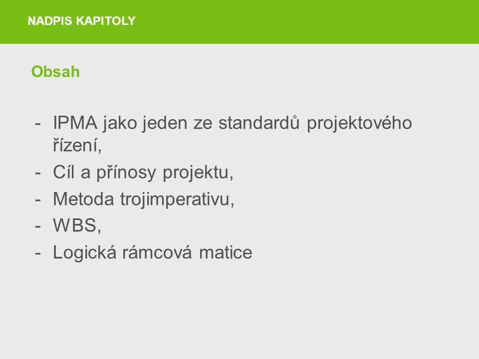 IPMA jako jeden ze standardů projektového řízení,