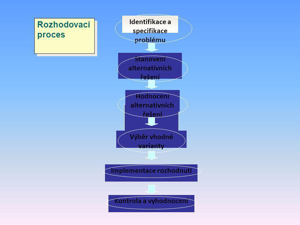 Rozhodovací proces Identifikace a specifikace problému