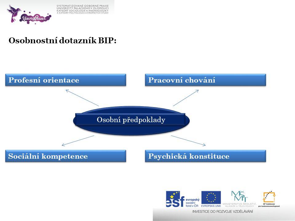Osobnostní dotazník BIP: