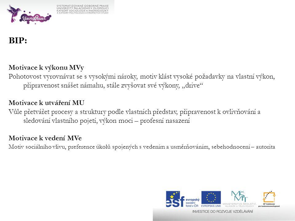 BIP: Motivace k výkonu MVy