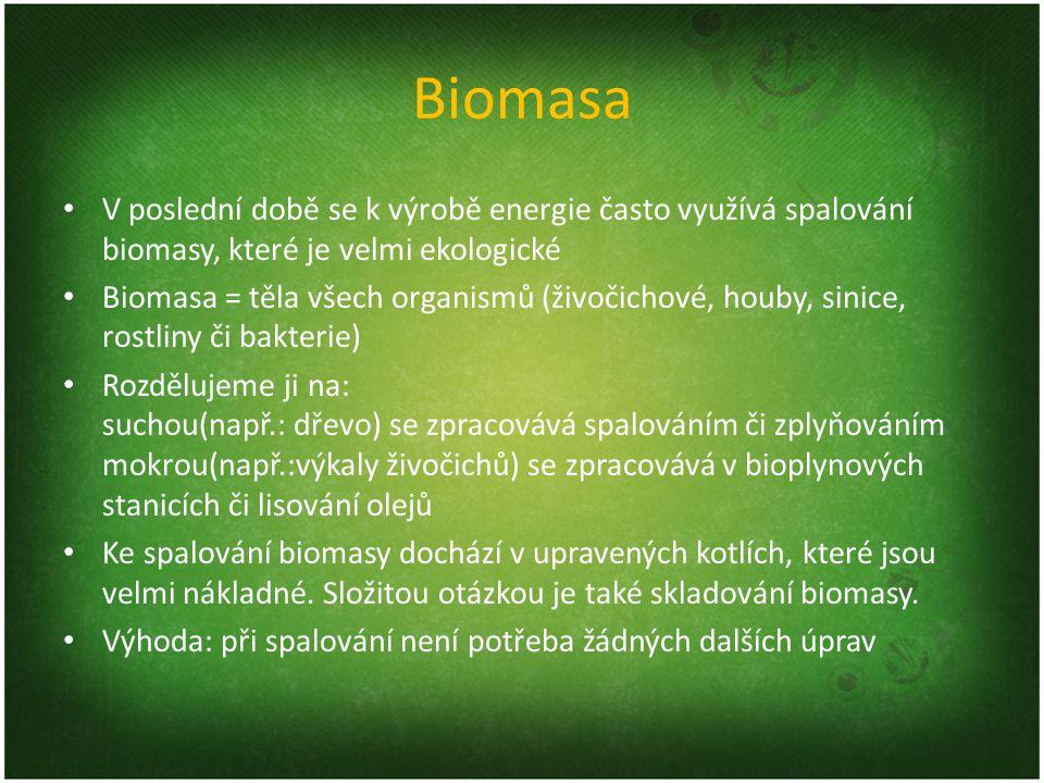 Biomasa V poslední době se k výrobě energie často využívá spalování biomasy, které je velmi ekologické.