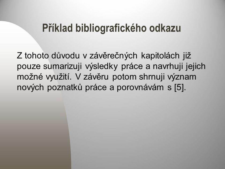 Příklad bibliografického odkazu