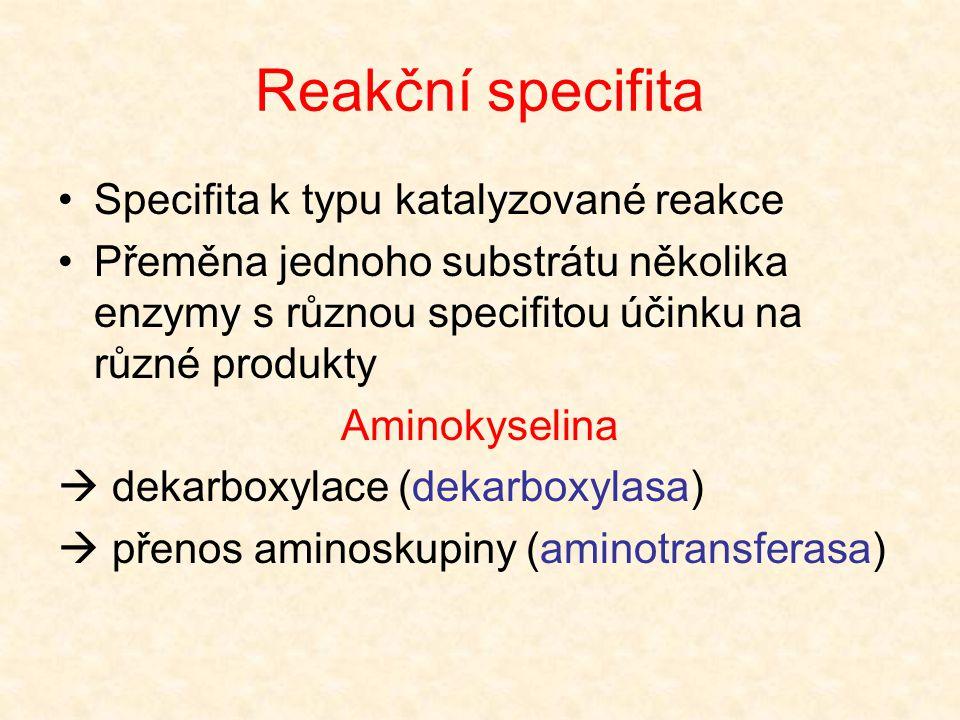 Reakční specifita Specifita k typu katalyzované reakce