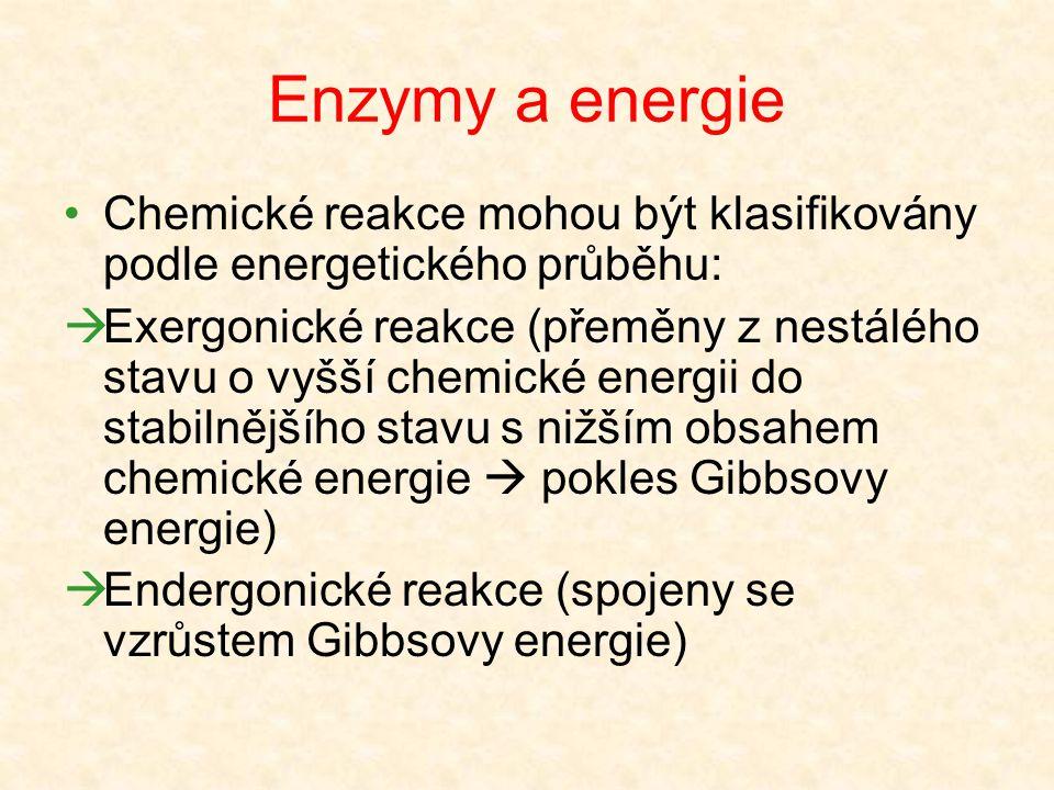 Enzymy a energie Chemické reakce mohou být klasifikovány podle energetického průběhu: