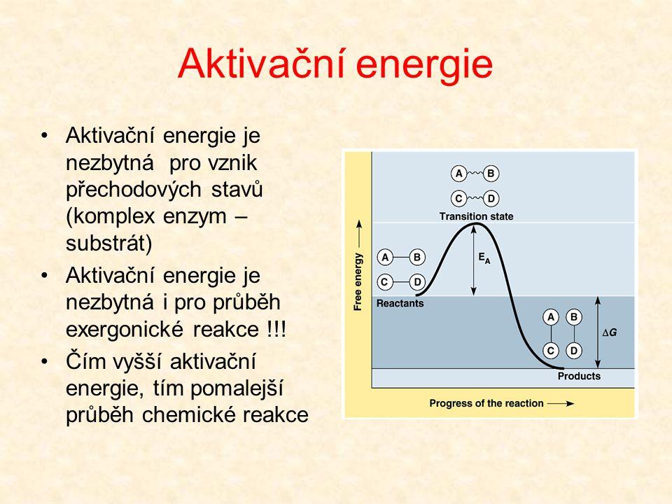 Aktivační energie Aktivační energie je nezbytná pro vznik přechodových stavů (komplex enzym – substrát)