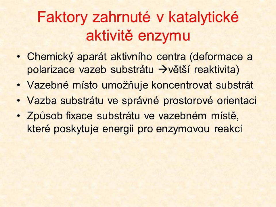 Faktory zahrnuté v katalytické aktivitě enzymu