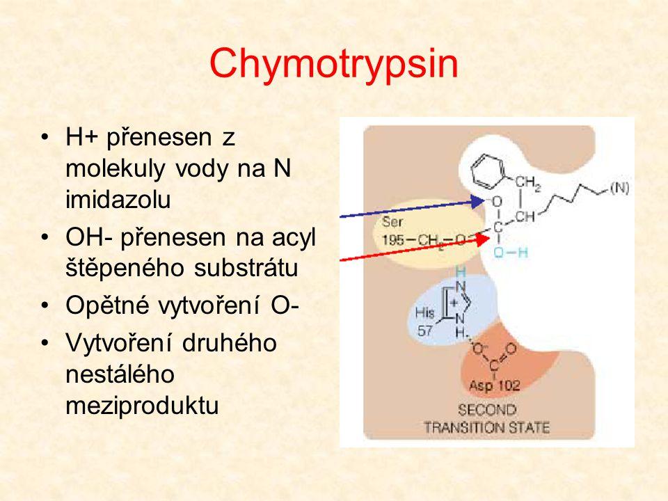 Chymotrypsin H+ přenesen z molekuly vody na N imidazolu