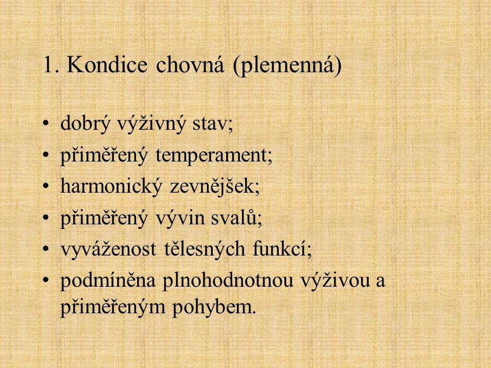 1. Kondice chovná (plemenná)
